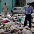 Several dead Haitians
