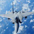 Japanese fighter jet