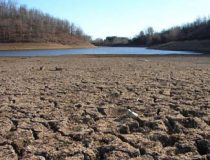 drought and dried river bed