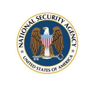 National Security Bald Eagle