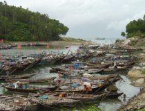 photo credit: Dr. Chu Manh Trinh, modified