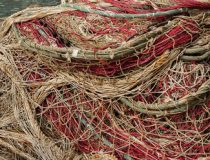 The SCS region may see more empty fishing nets in the near future. (public domain)