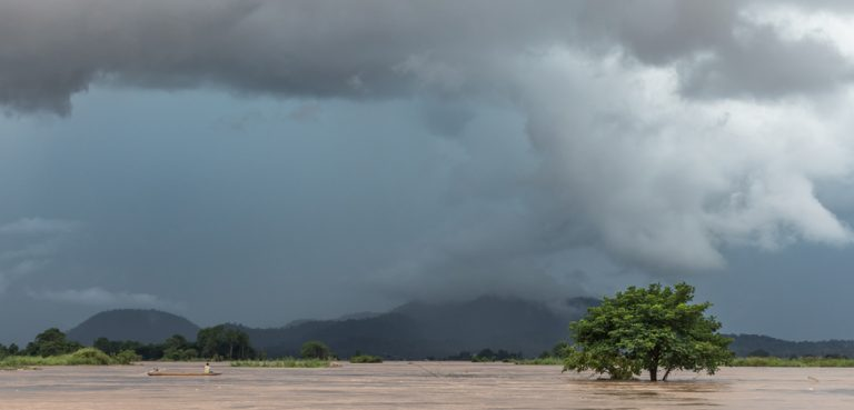 SubmergedTree in Laos, cc Basile Morin, modified, 4.0, https://commons.wikimedia.org/wiki/File:Submerged_tree_under_a_dark_and_cloudy_sky_in_Si_Phan_Don.jpg